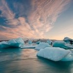 Climate Change and The Refrigeration Market: a New Reality